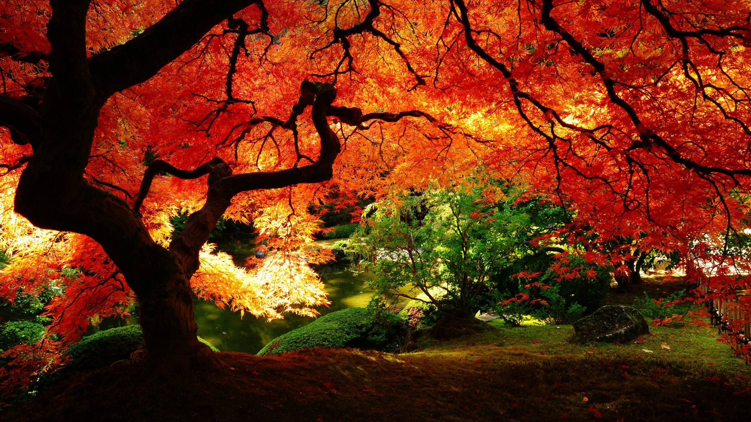 Pix For > Japan Scenery Wallpaper