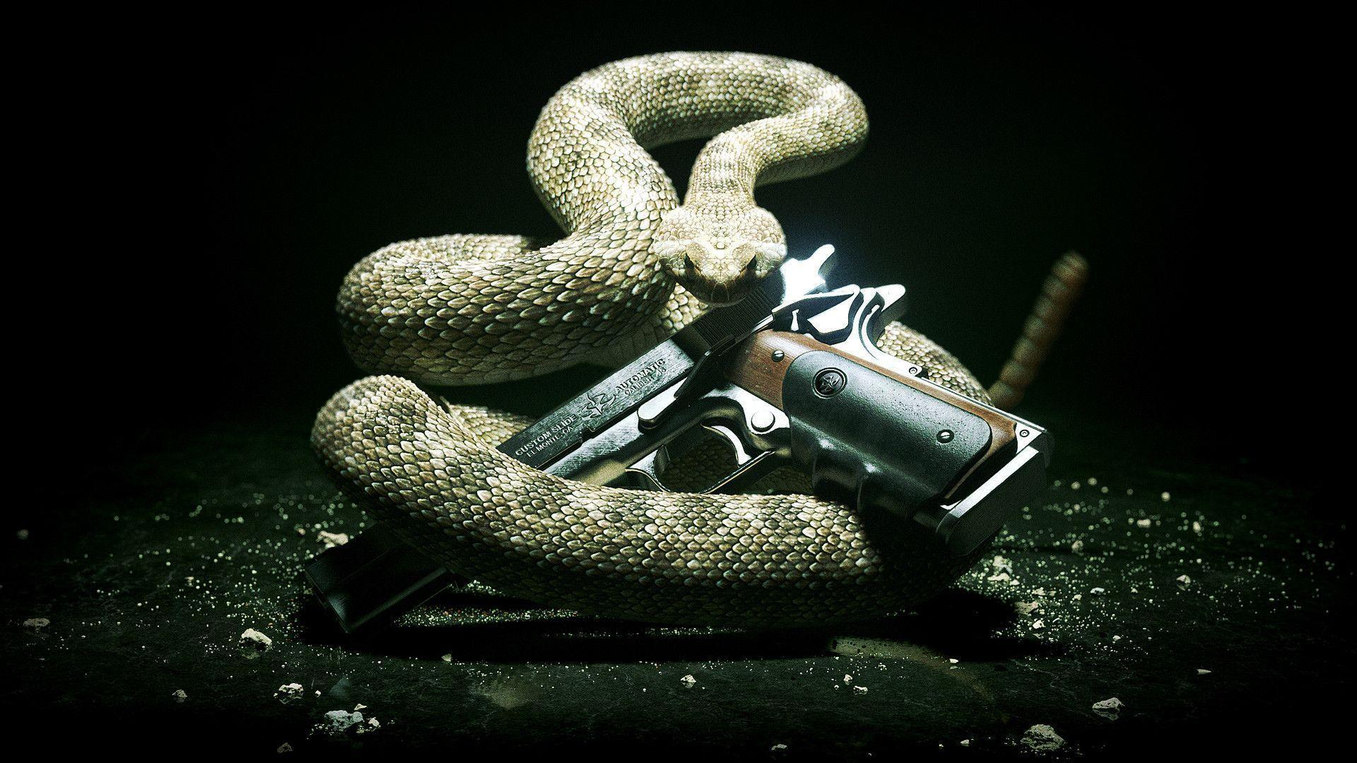 Pix For > Cool Snake Wallpapers Hd