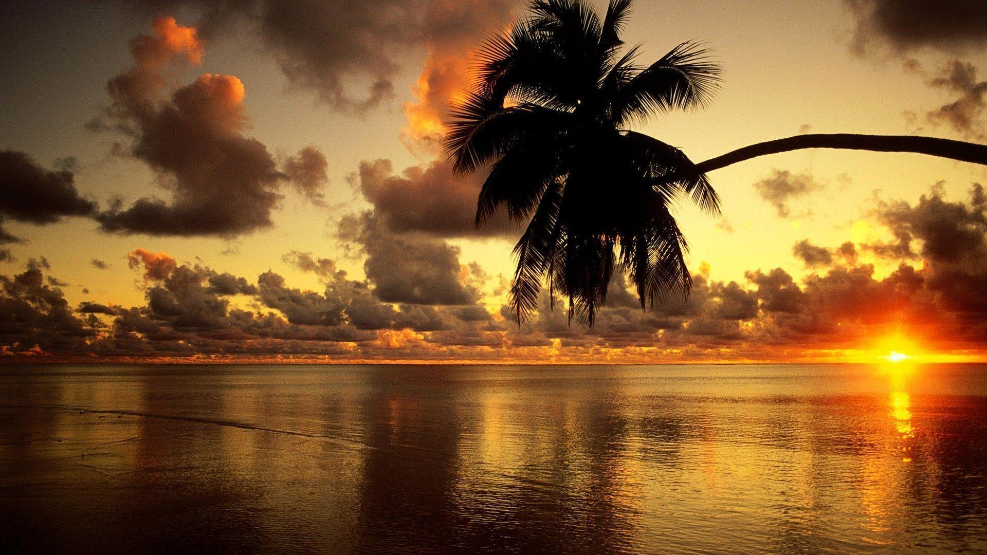 Download Beach Sunrise Wallpapers Desktop Pictures 5 HD Wallpapers
