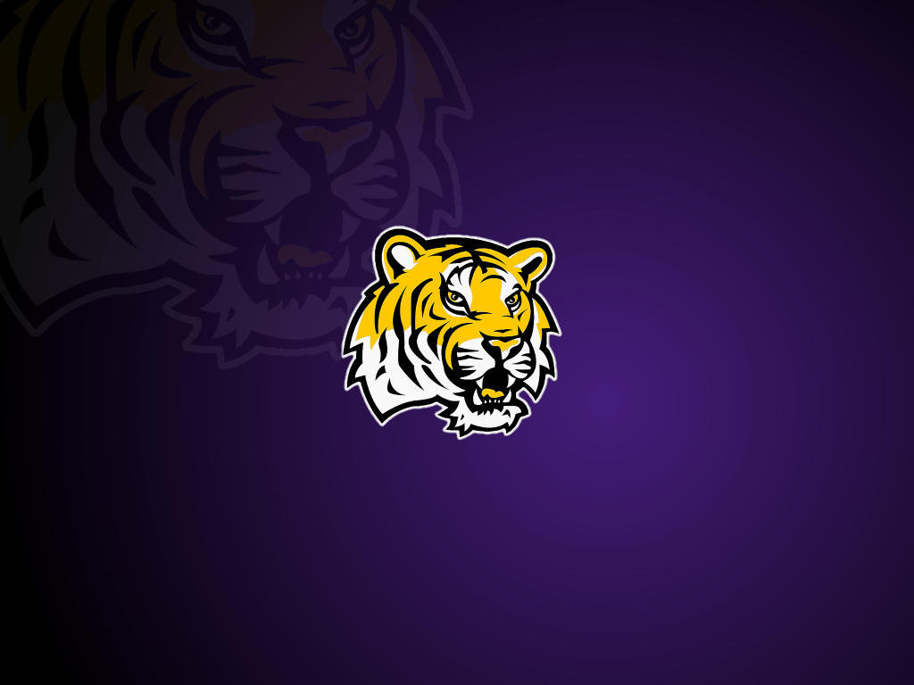 lsu wallpapers wallpaper cave