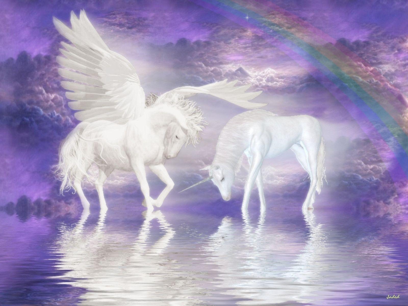 53 unicorn wallpapers unicorn backgrounds