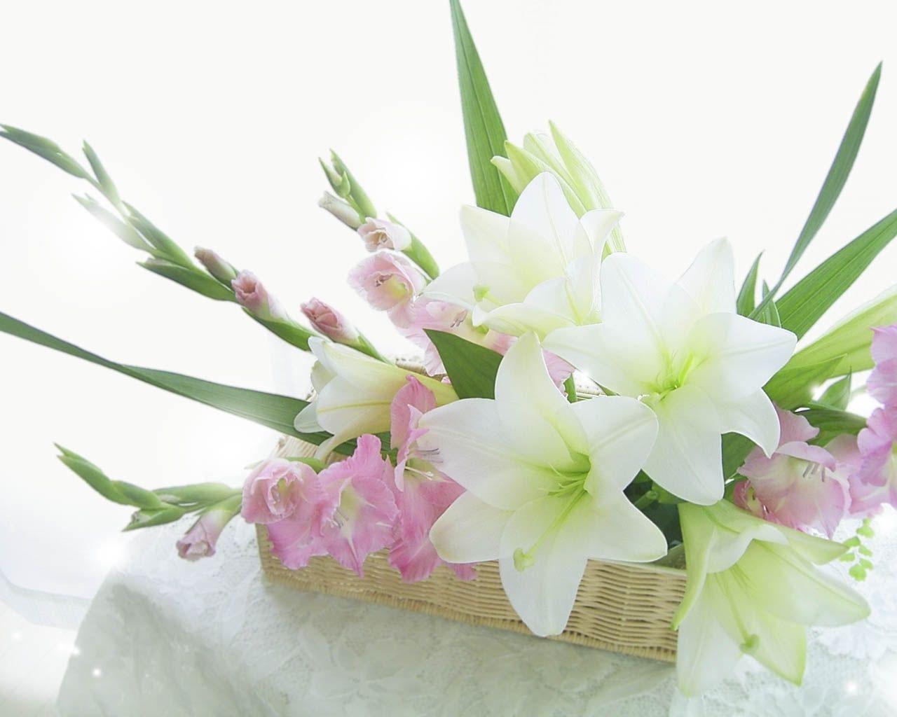 Beautiful <b>Flower Wallpapers</b> For You: <b>Flowers Basket Wallpaper</b>