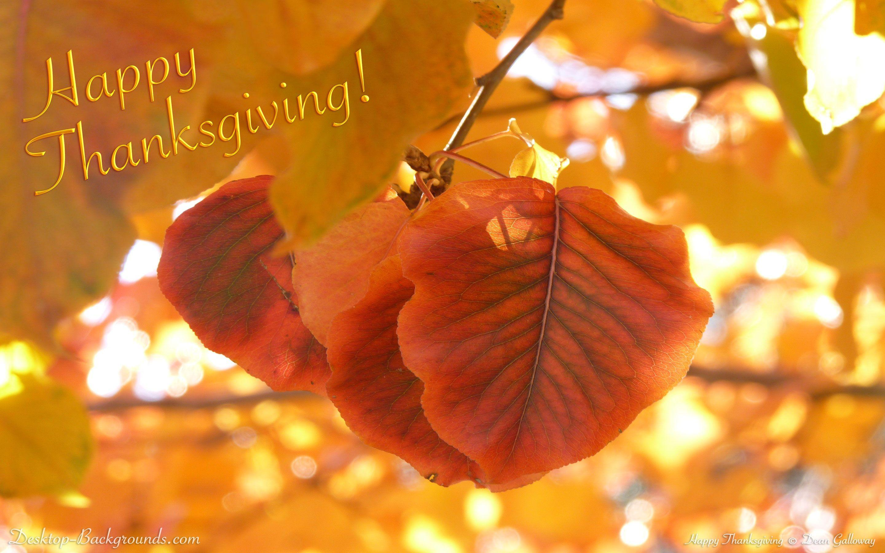 Happy Thanksgiving Backgrounds - Wallpaper Cave