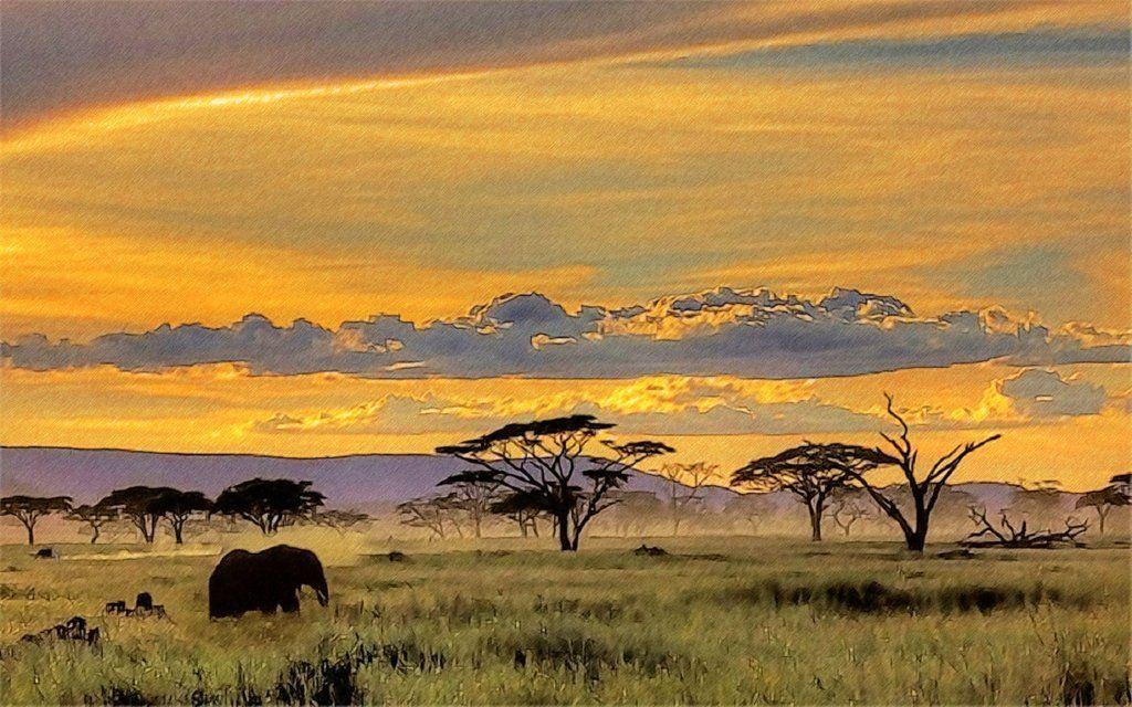 African Safari Wallpaper yvt2 (1) by T-Douglas-Painting on DeviantArt