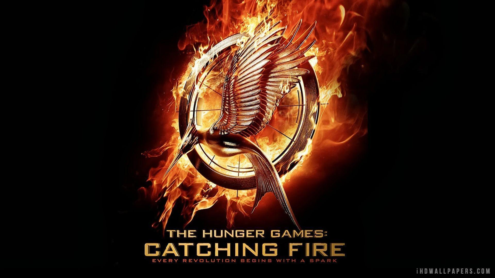 catching fire swesub