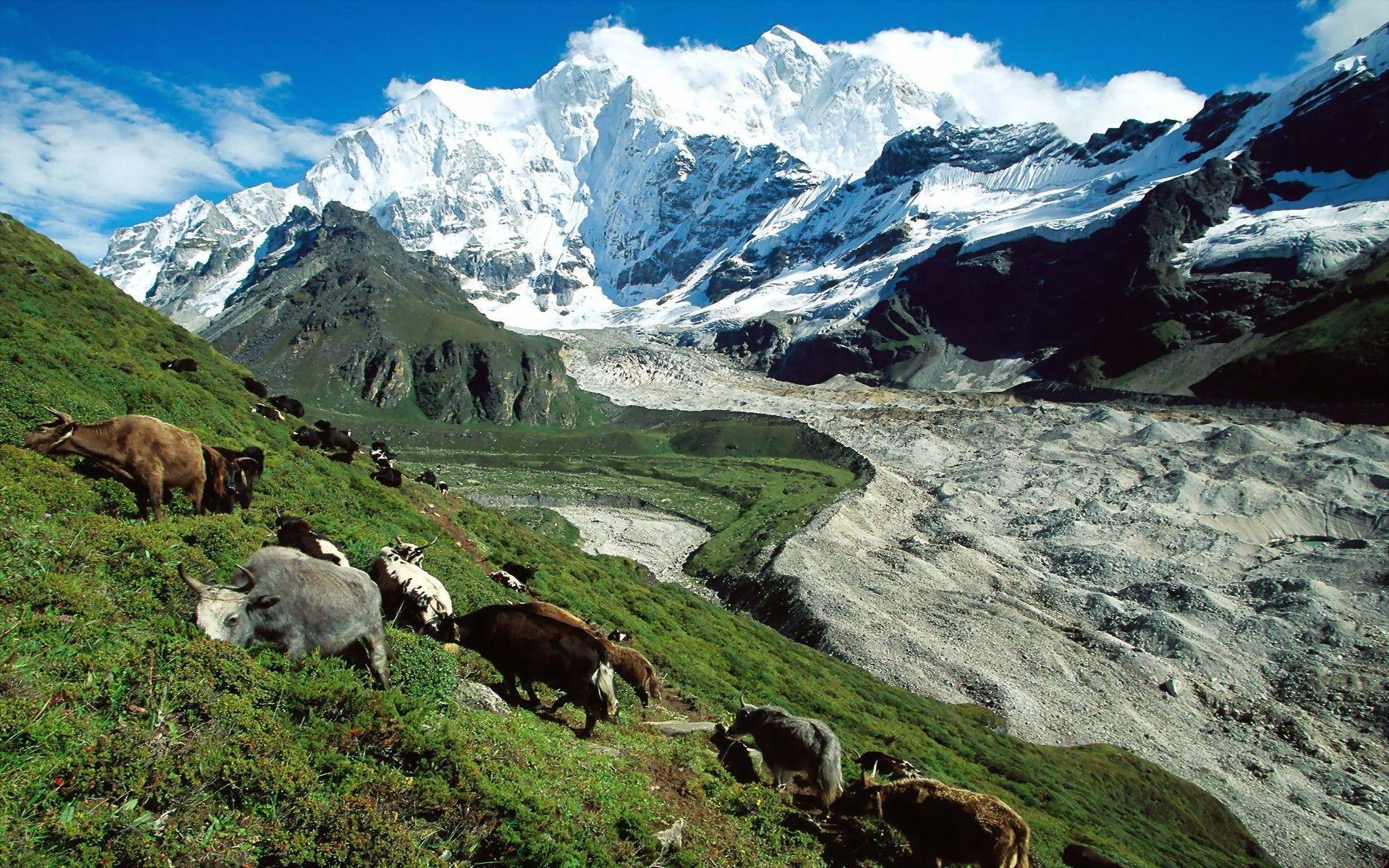 Tibet Wallpapers