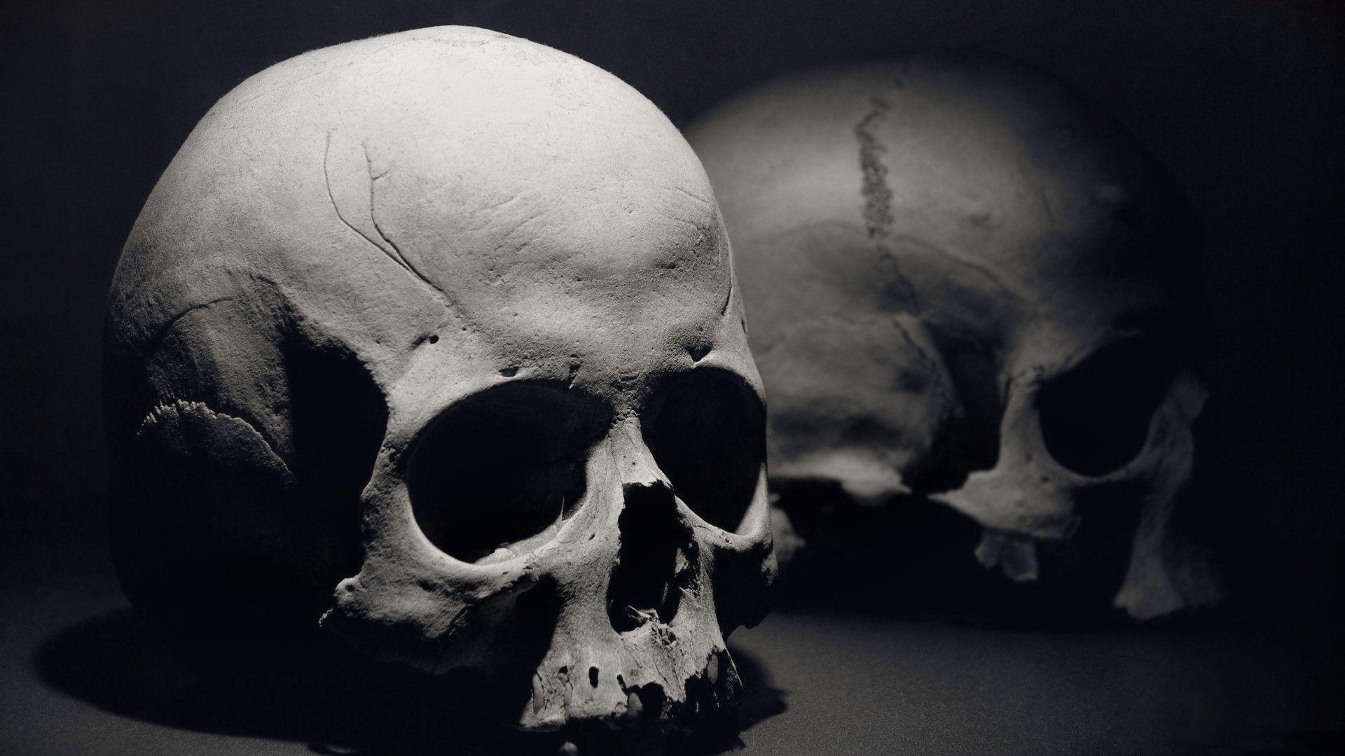 Skull Wallpapers 1920x1080  Wallpaper Cave