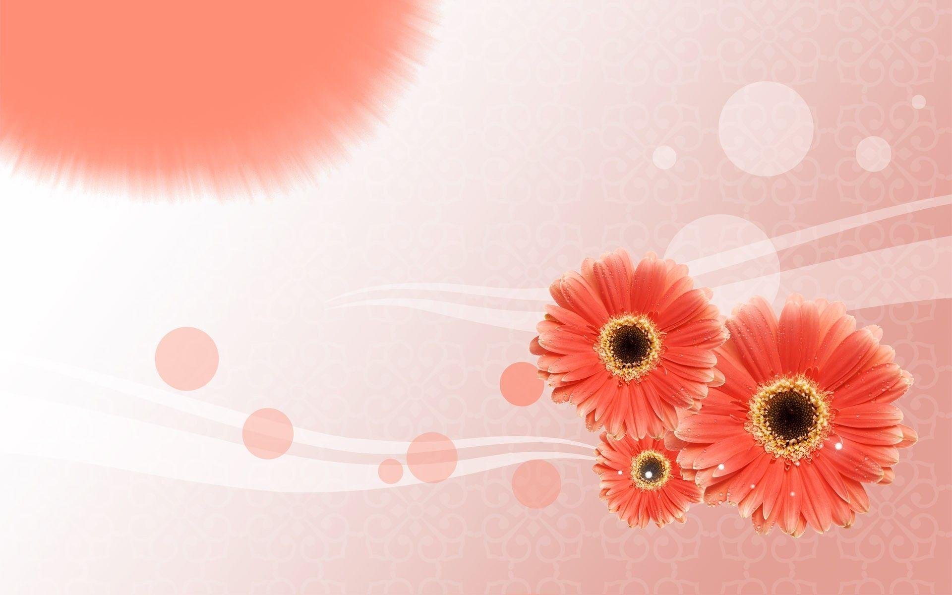 Flowers Backgrounds Wallpaper Cave