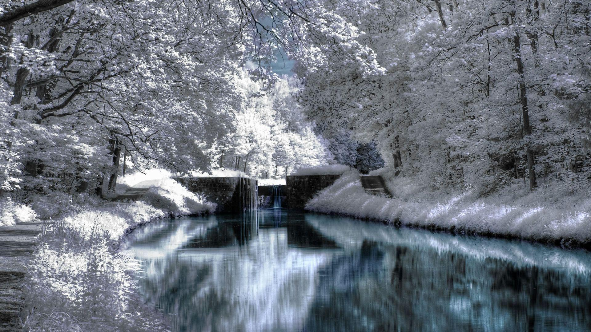 30 Best Collection of Winter Wallpapers | ForestWonders