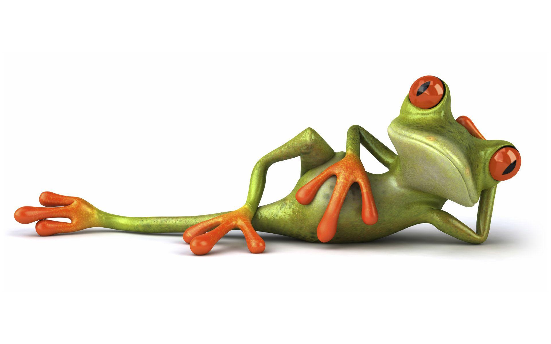 Funny frog wallpapers wallpaper cave 3d funny frog wallpaper wallpaper download voltagebd Image collections