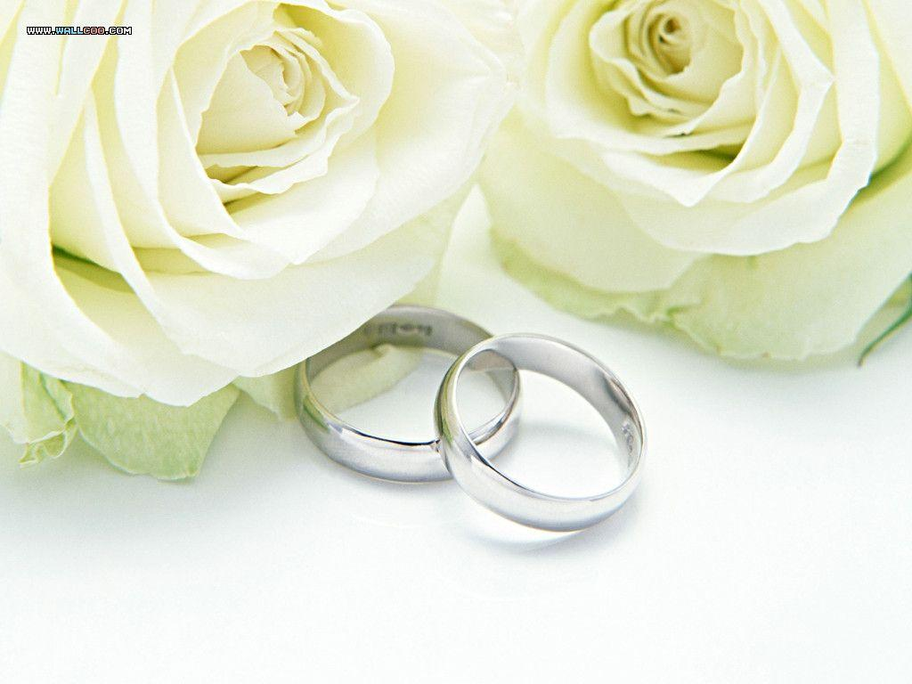 Wedding Free Flowers And Backgrounds 1024x768 396412