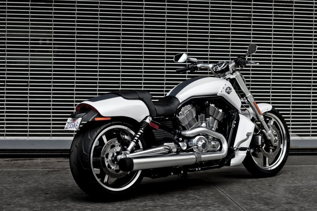 harley davidson v rod muscle wallpapers wallpaper cave. Black Bedroom Furniture Sets. Home Design Ideas