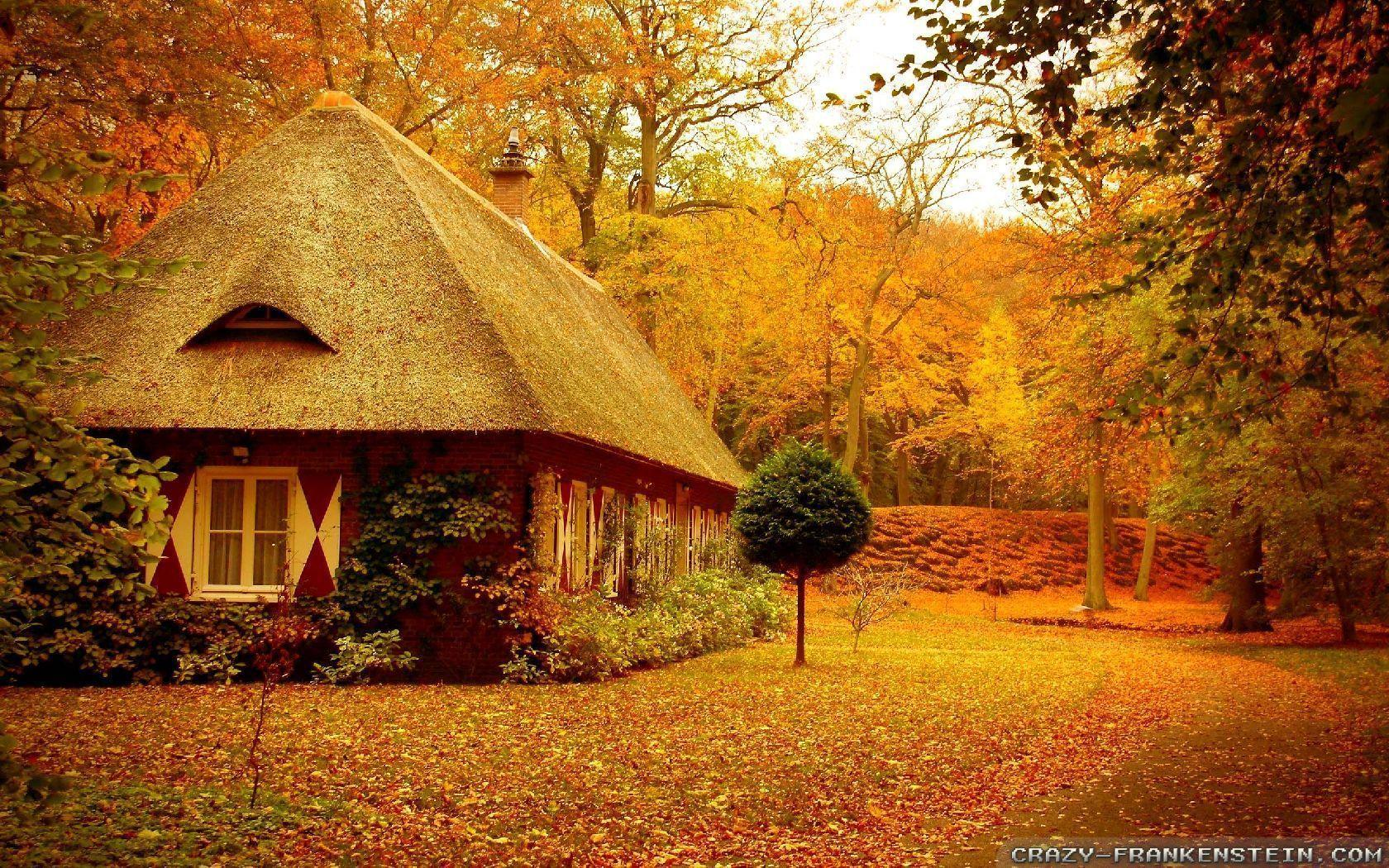 Autumn scenes wallpapers wallpaper cave for Wallpaper home nature