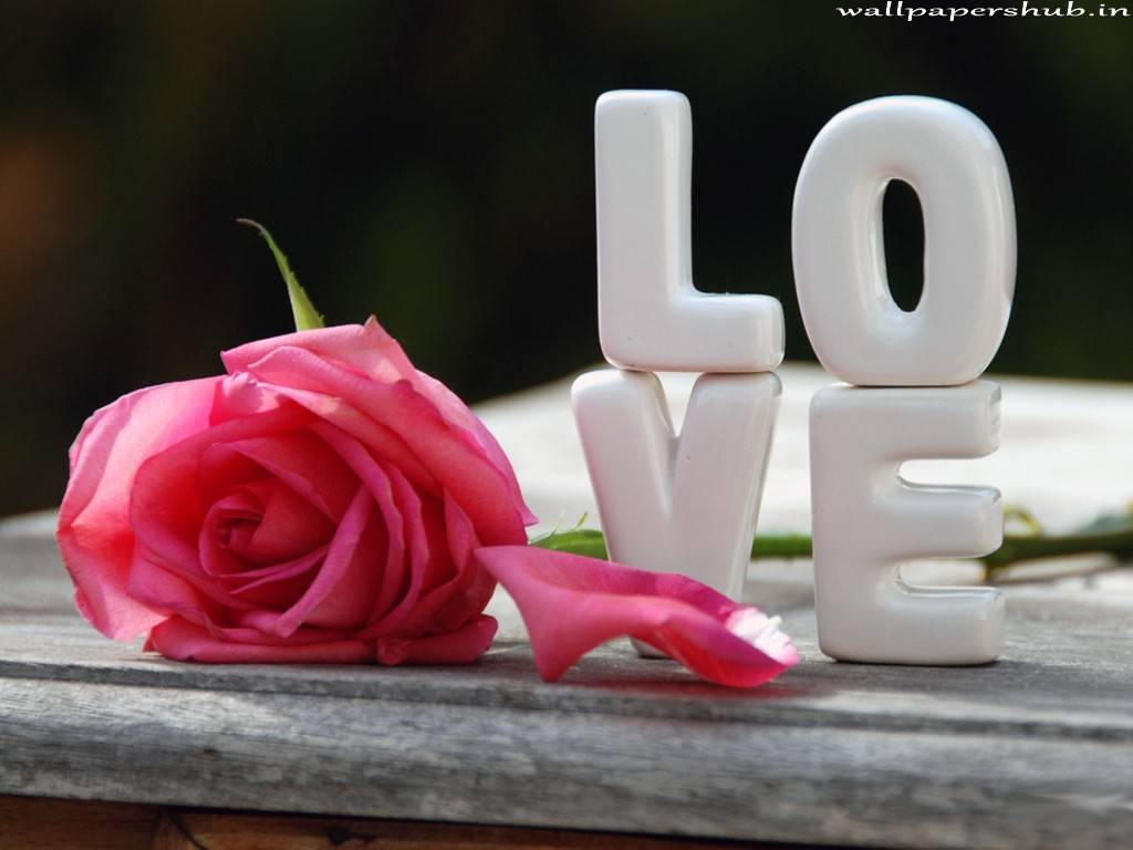 Love Wallpaper P Name : 3D Names Wallpapers - Wallpaper cave
