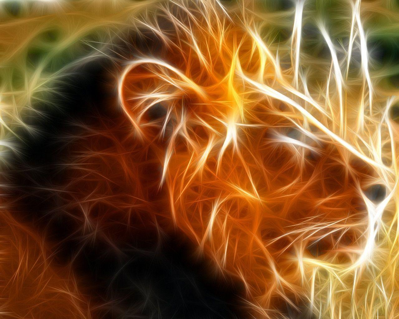 waspwednesday: Lion Wallpapers