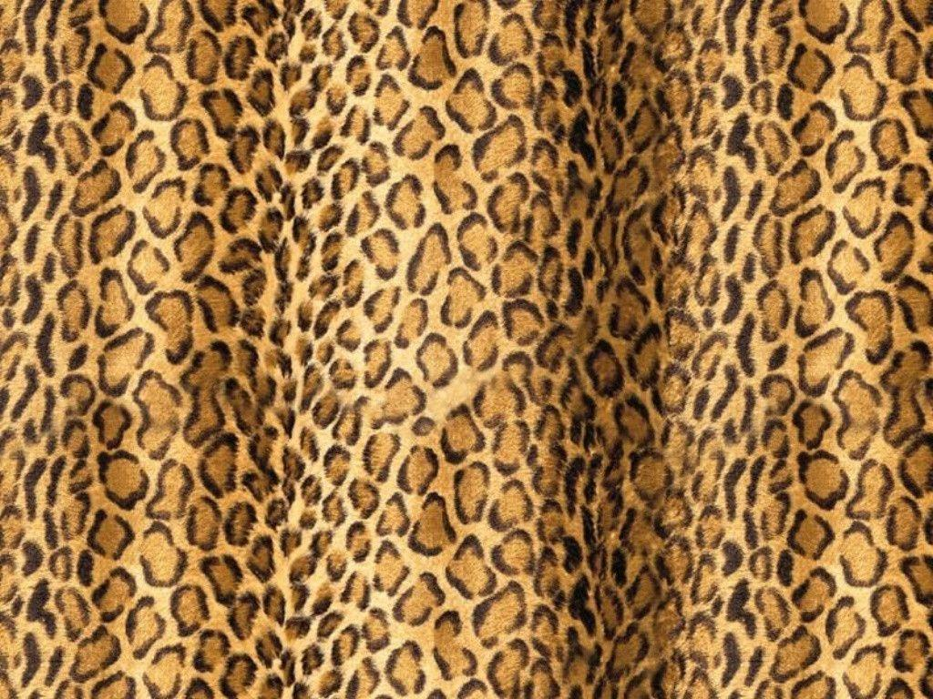 this animal print desktop - photo #18