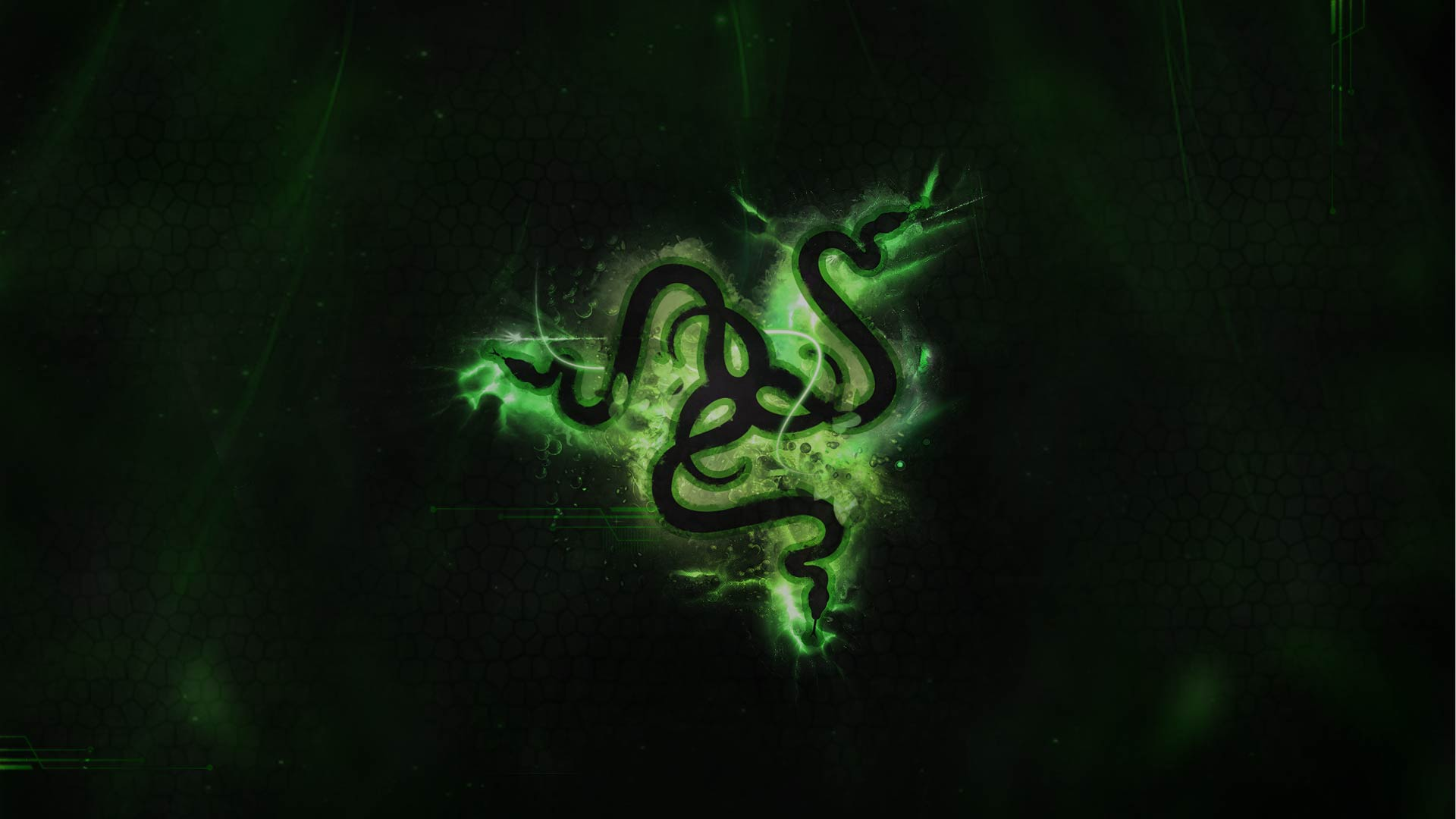 Download Dzd Razer Revamp Green Dzdigital Deviantart Wallpapers