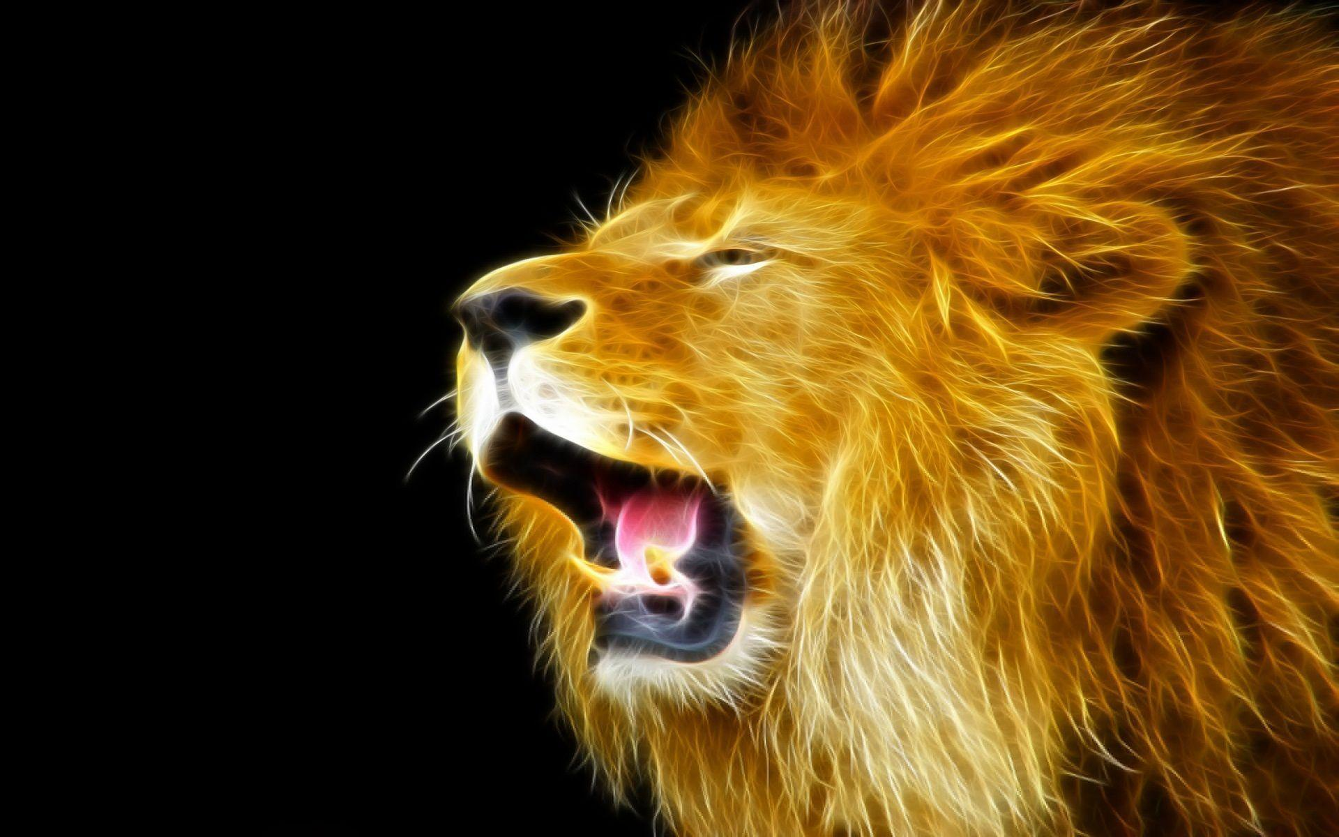 Download Lion Wallpapers - HD Wallpapers Inn