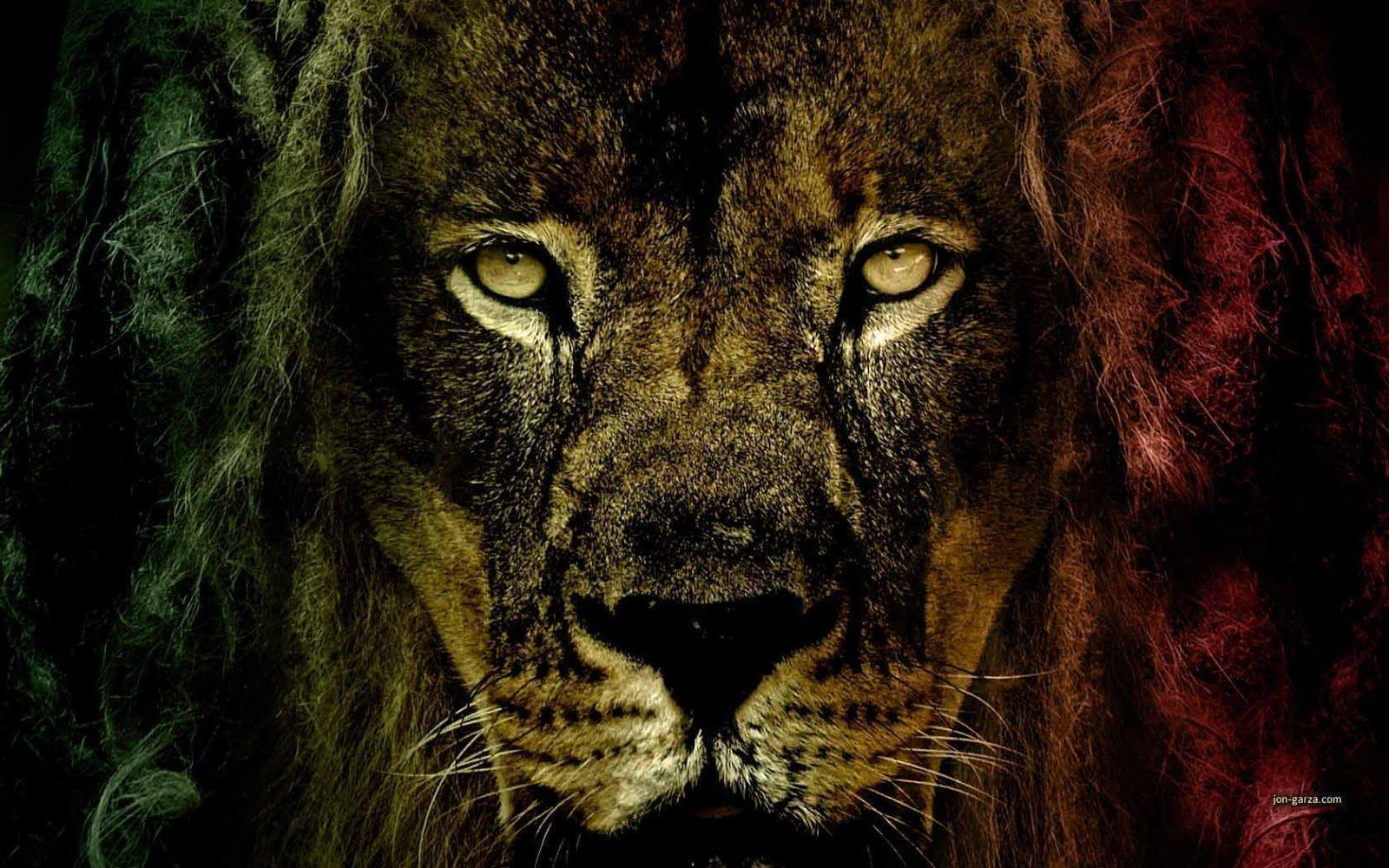 Rasta Lion Wallpapers Wallpaper
