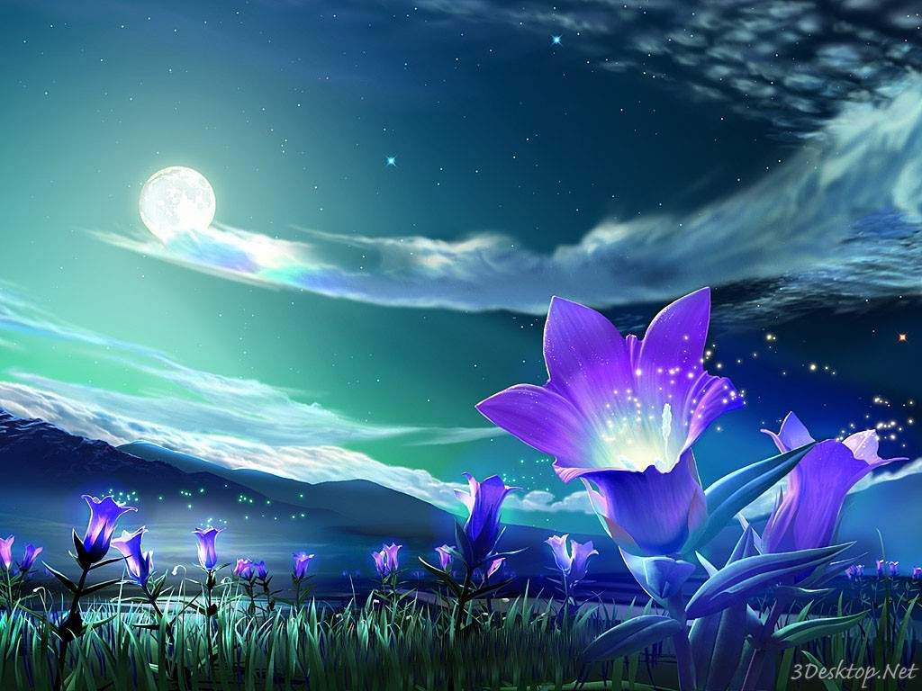3D Flower Nature Wallpaper For Desktop