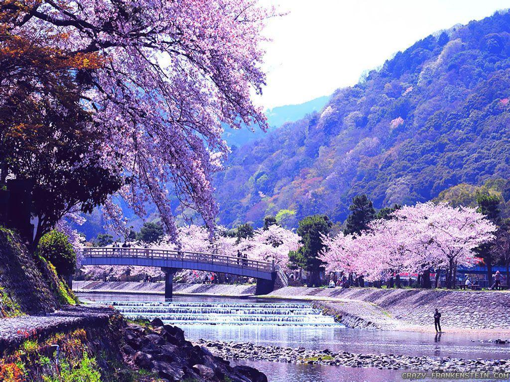 japanese nature wallpapers wallpaper cave