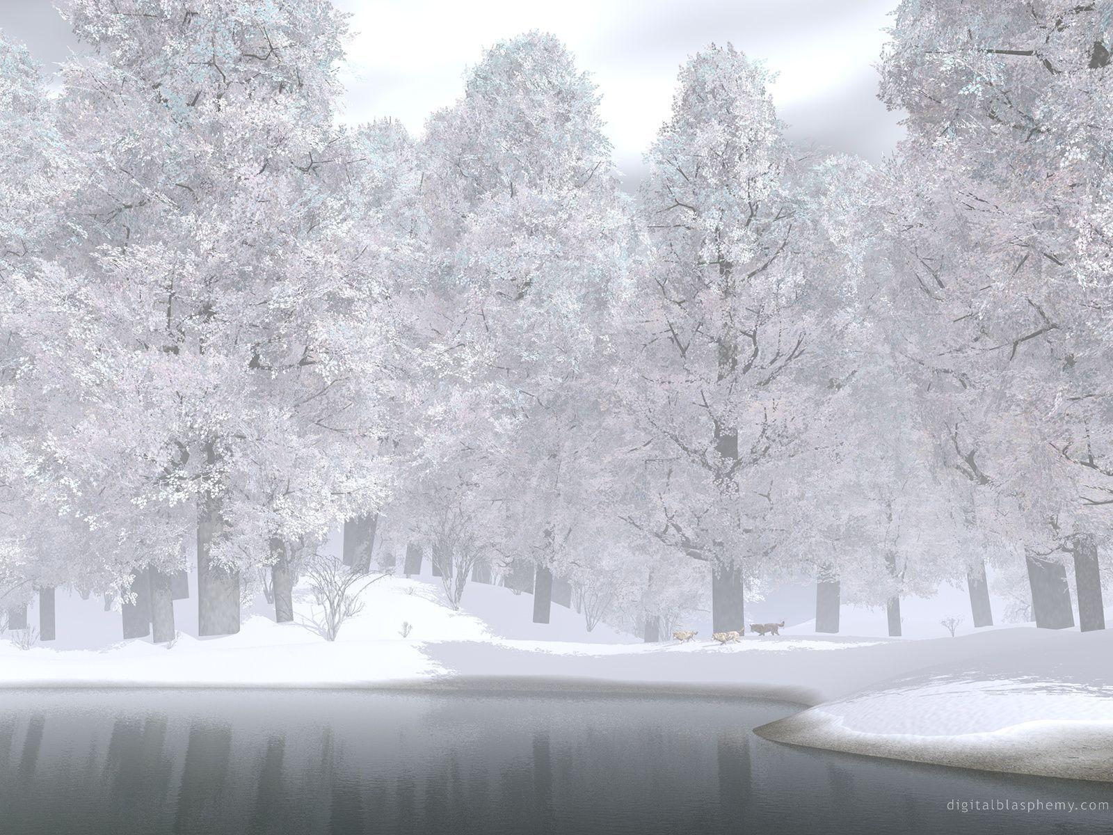 Snow Wallpapers 108 34801 Image HD Wallpapers