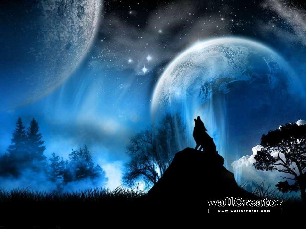 30+ Lone Wolf Desktop Wallpaper Pics