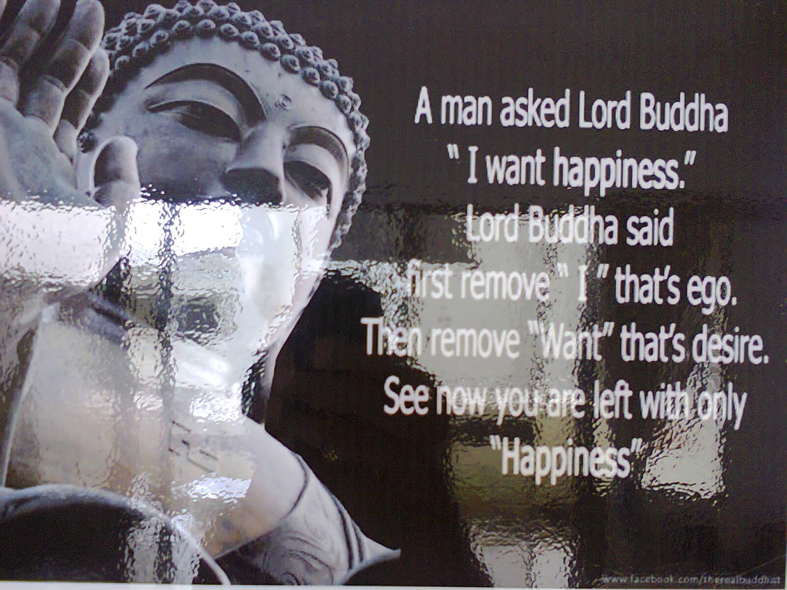 Buddha Quotes About Love Buddha Quotes Wallpapers  Wallpaper Cave