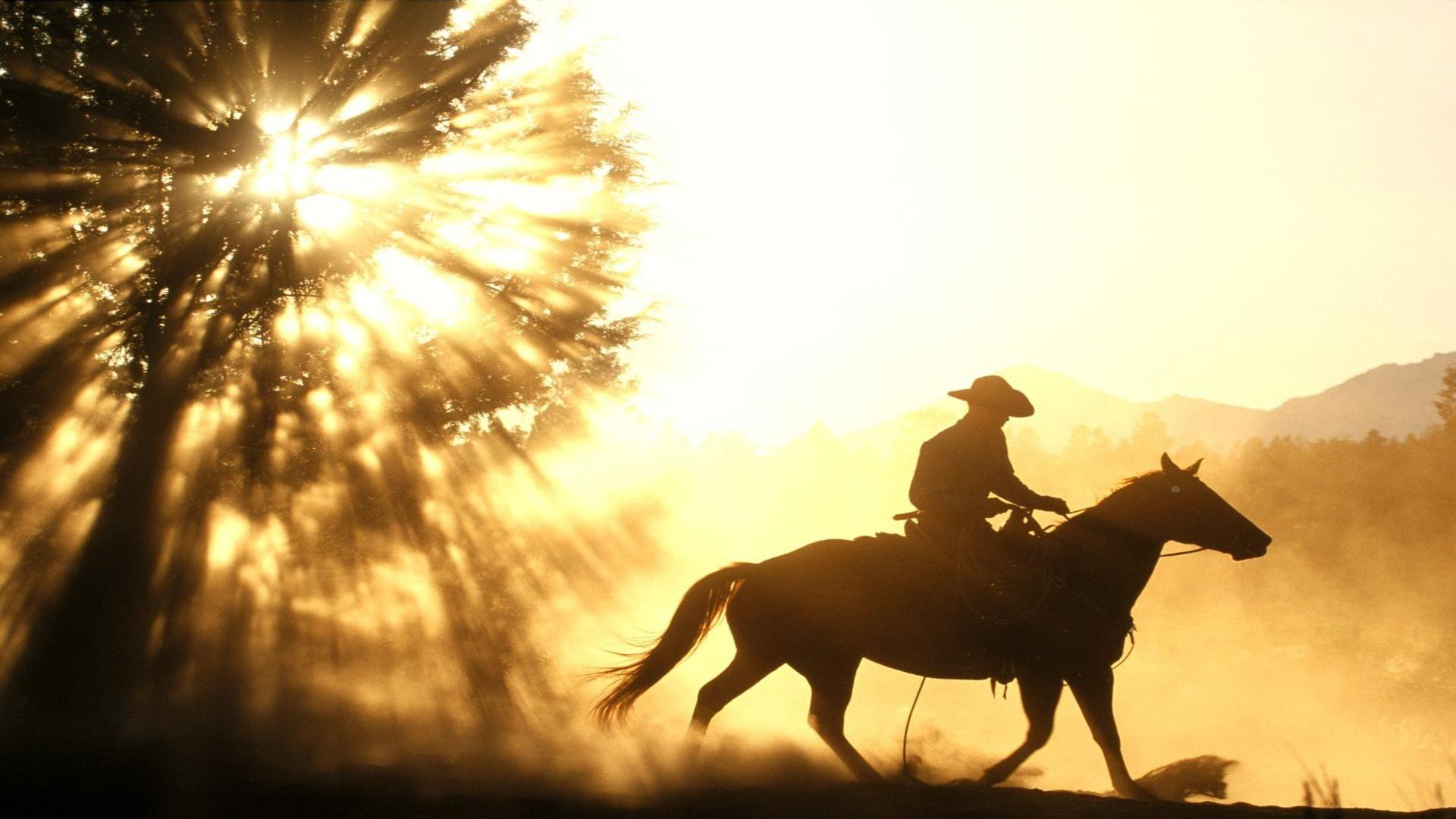 cowgirl silhouett wallpaper - photo #9