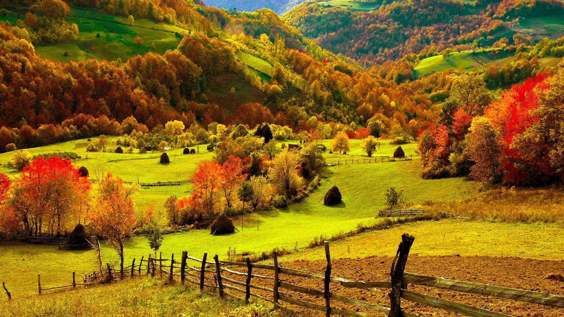 pix for fall scenery desktop backgrounds