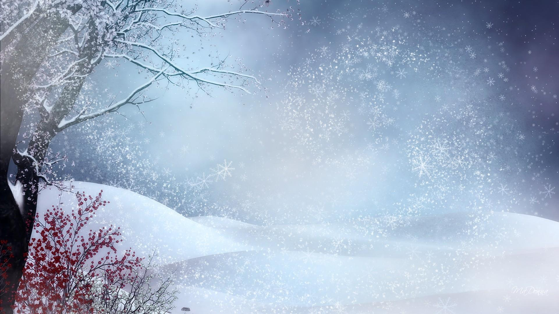 Winter Snow Wallpapers Wallpaper Cave
