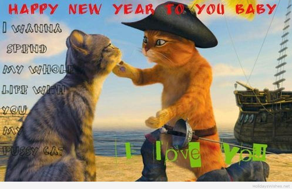 Funny cats love wallpapers happy new year 2015