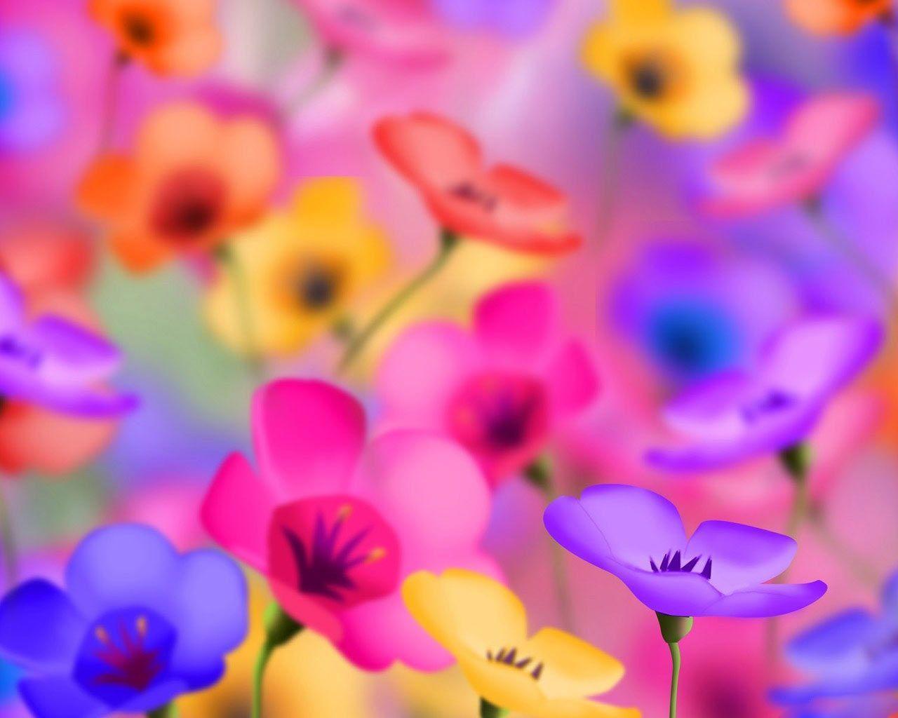 Download windows seven black 1024x768 wallpaper 1771 - Desktop Wallpaper Gallery Windows 7 Colorful Flowers Desktop