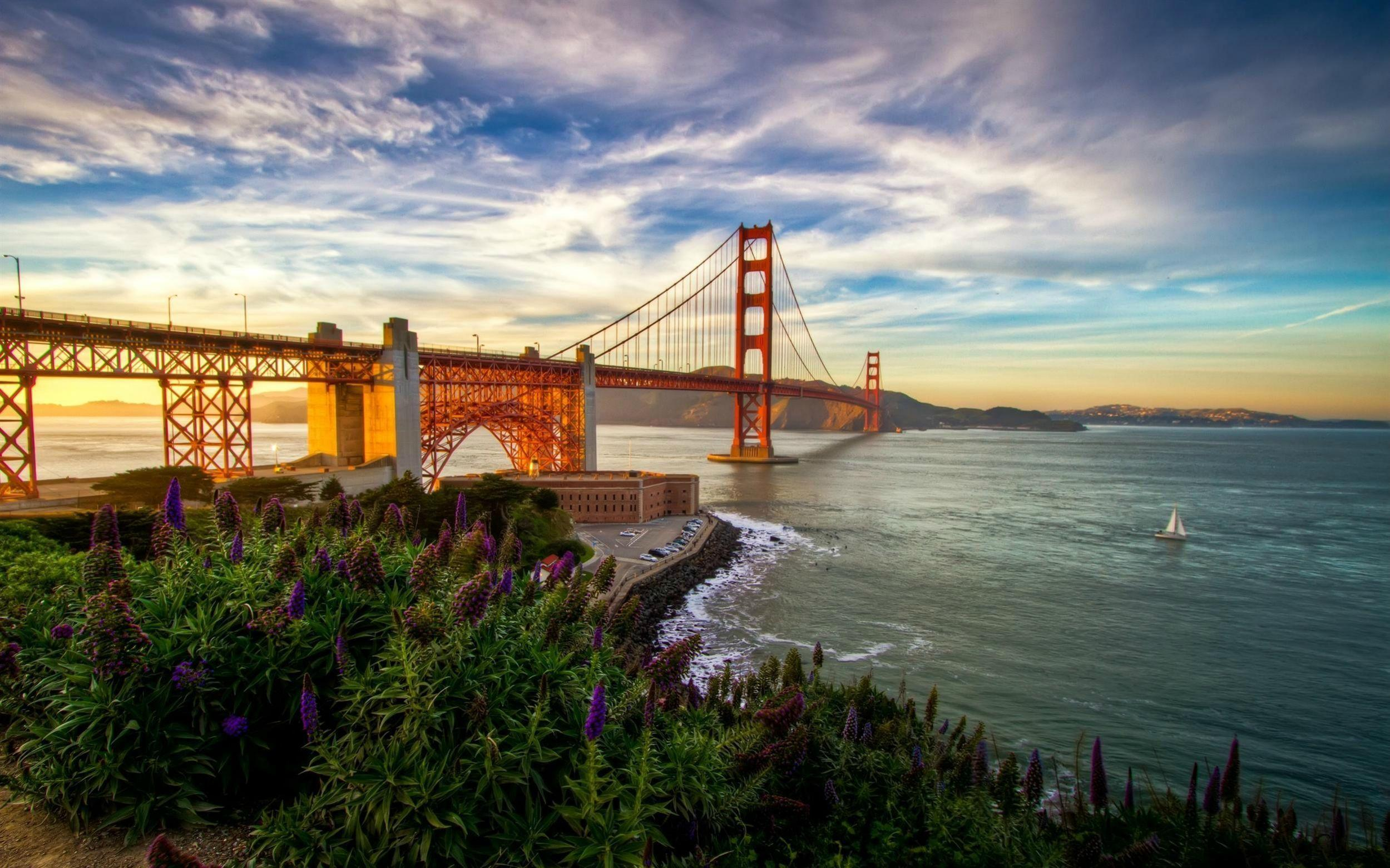 Daily Wallpaper: Summer in San Francisco