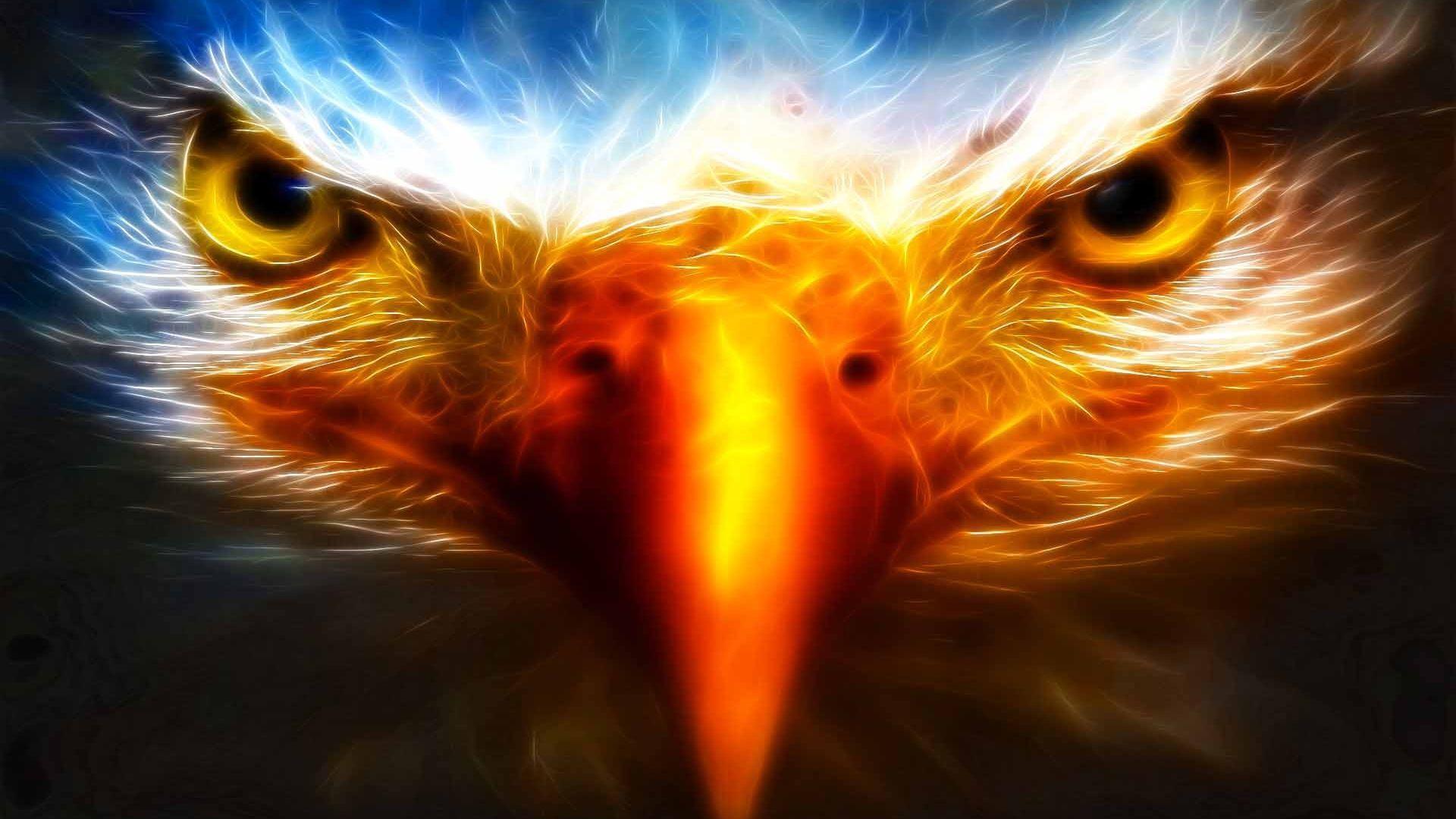 Eagle - DriverLayer Search Engine