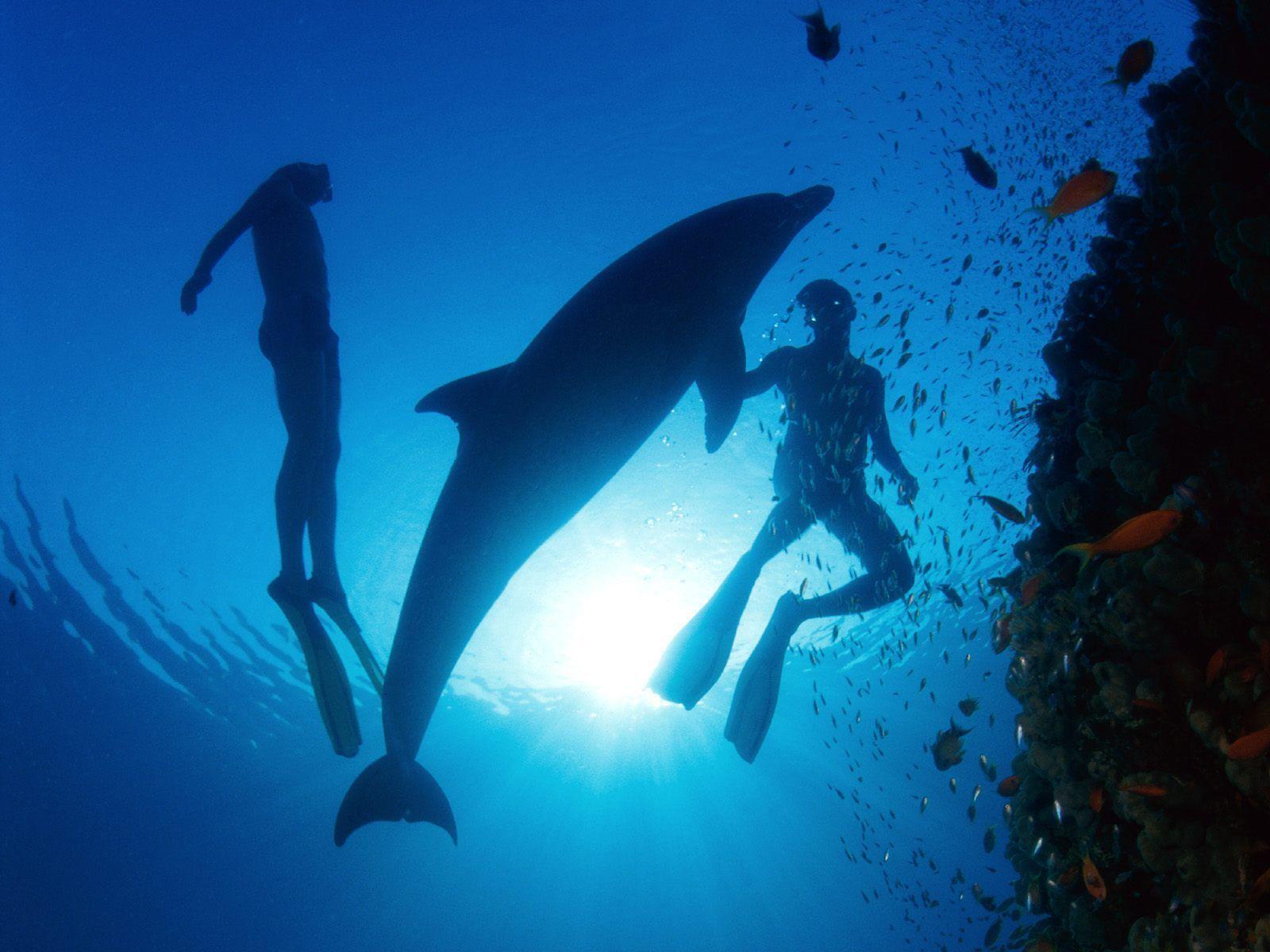 deep ocean desktop wallpaper - photo #21