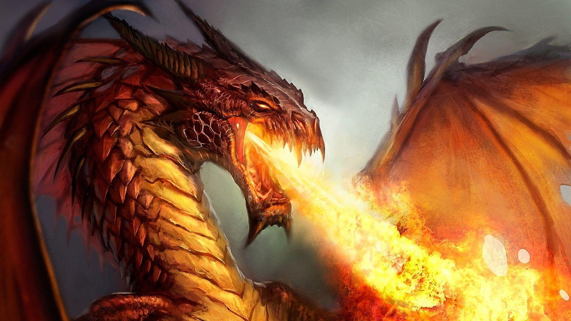 Wallpapers For Fire Dragon 3d