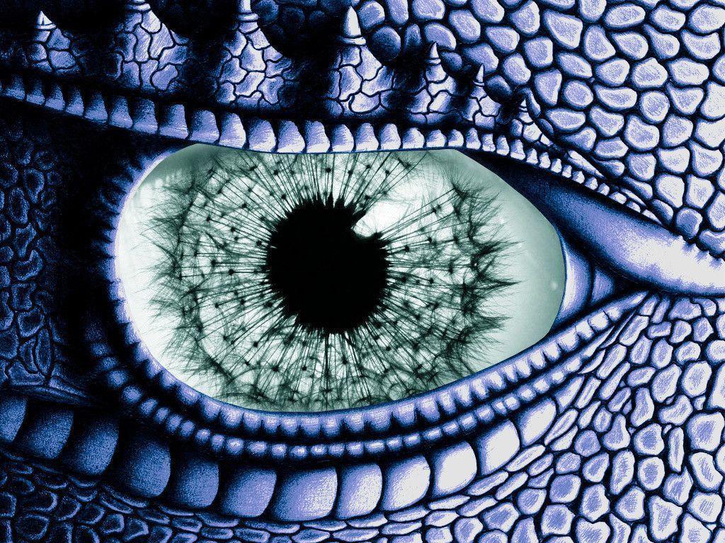 Взгляд дракона в картинках