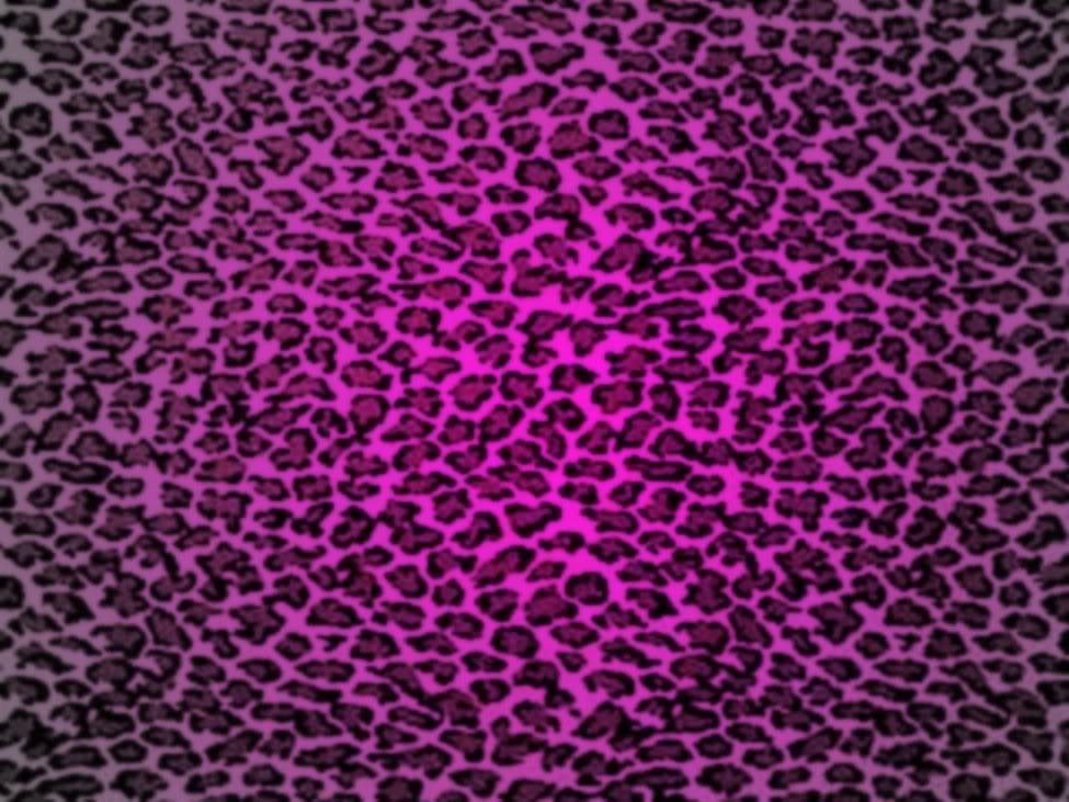 Pictures Of Cheetah Print Wallpapers - Wallpaper Cave