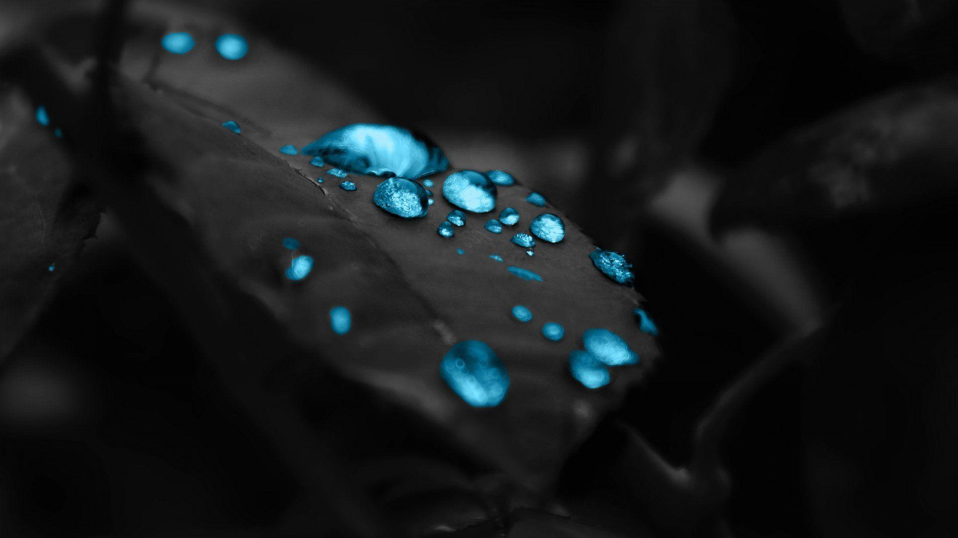 Black And Blue Wallpapers Hd Wallpaper Cave