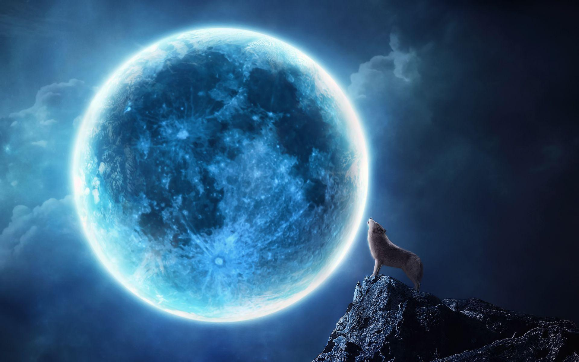 Howling wolf full moon Wallpapers | Pictures