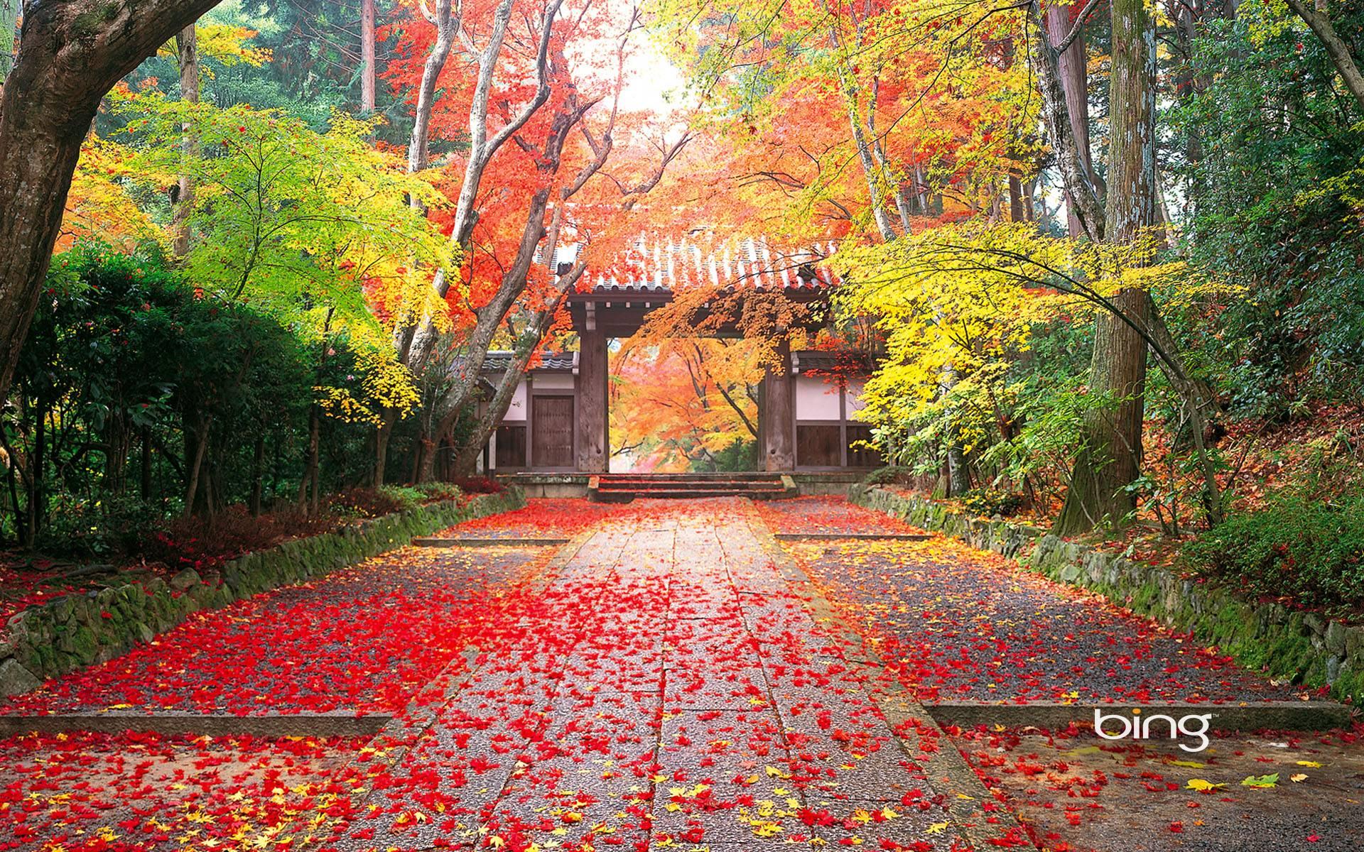 japanese nature desktop wallpaper for desktop background 13 hd