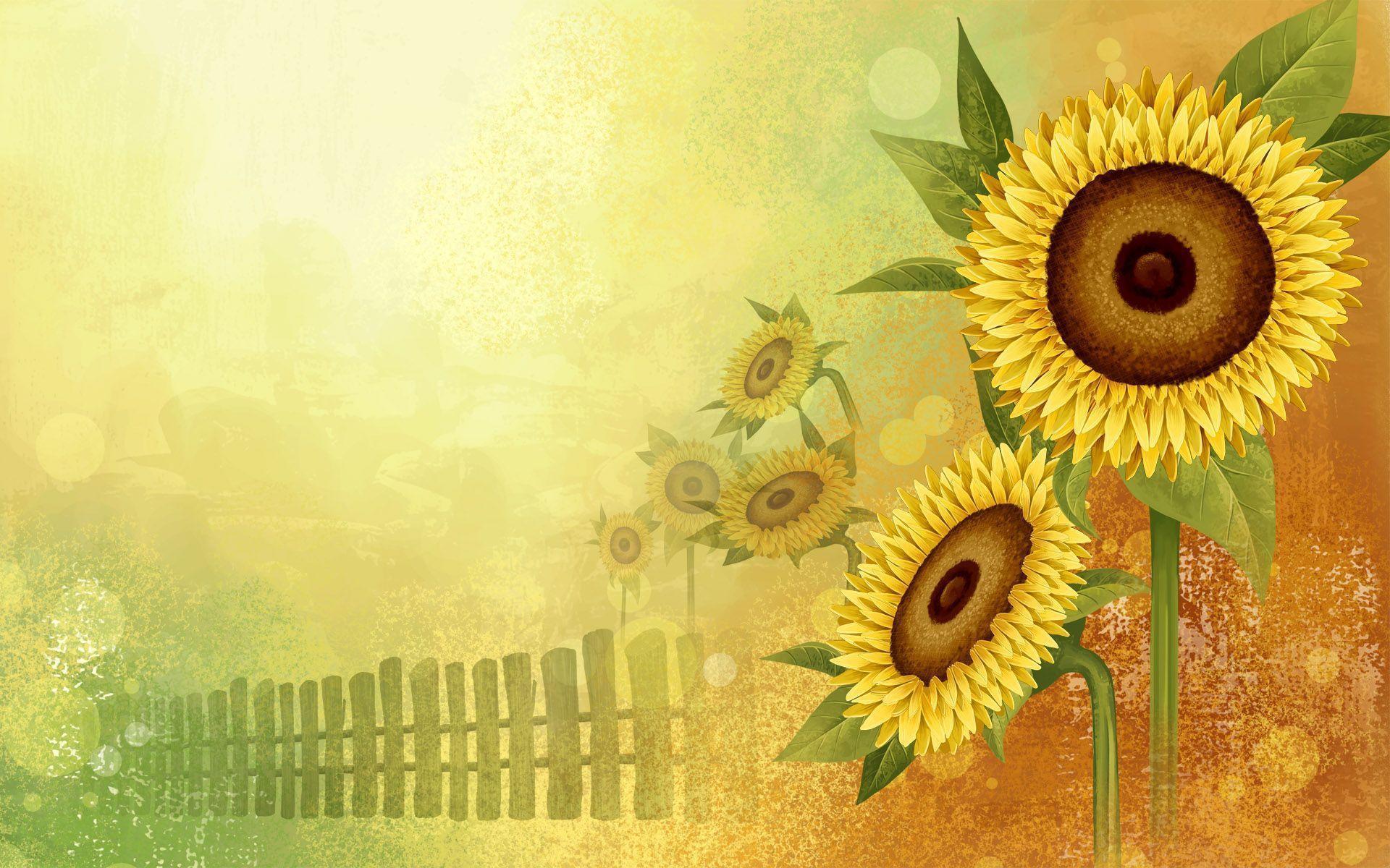 sunflower tumblr wallpaper full - photo #42