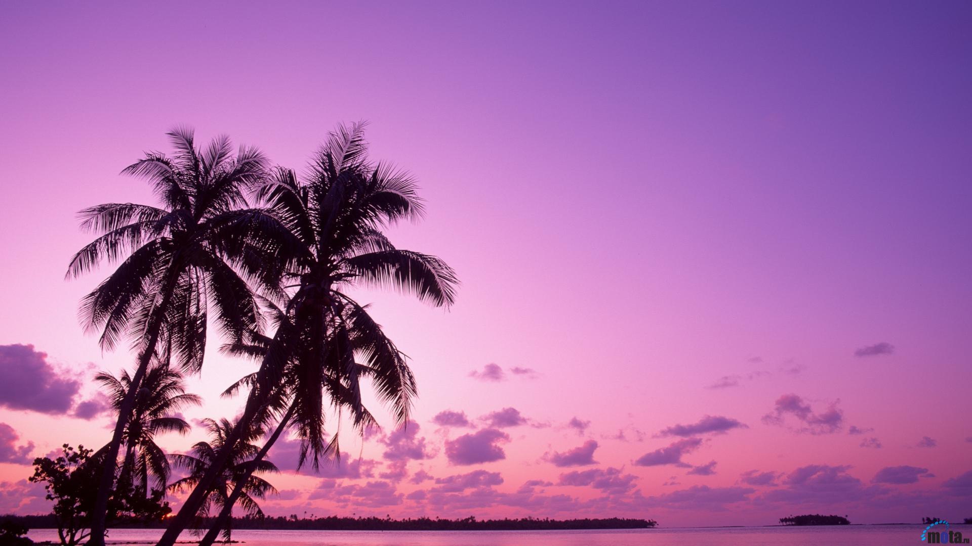 Tropical Island Beach Ocean Sunset: Tropical Island Sunset Wallpapers