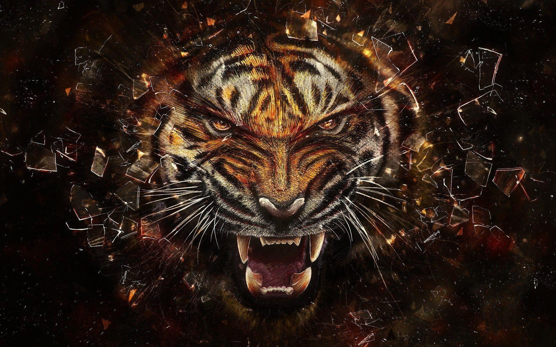 Phenomenal Tiger Wallpapers Desktop Wallpaper Cave Download Free Architecture Designs Embacsunscenecom