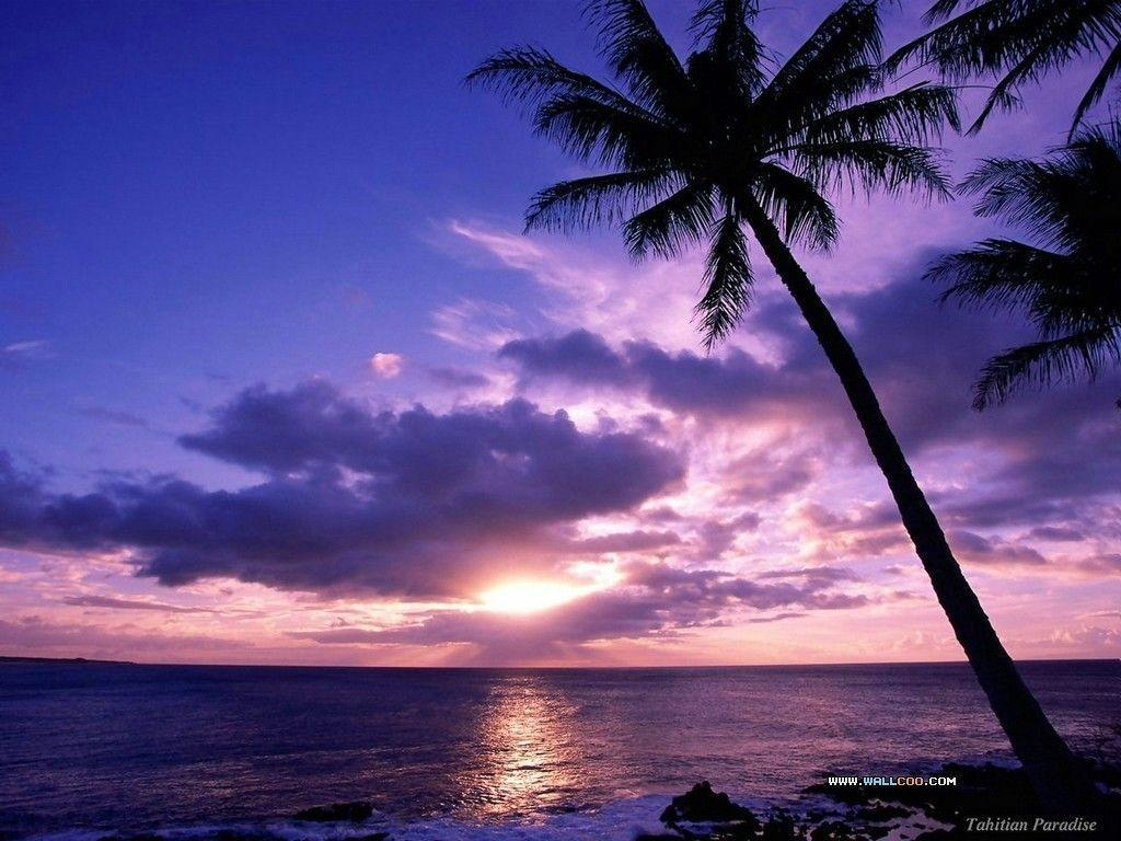 Hd Tropical Island Beach Paradise Wallpapers And Backgrounds: Tropical Island Desktop Wallpapers