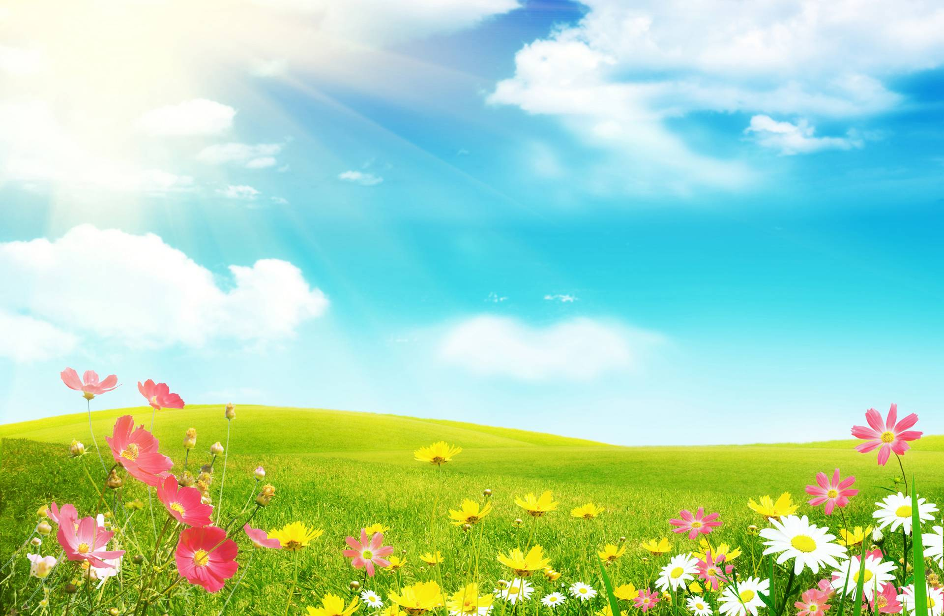 free spring desktop wallpapers