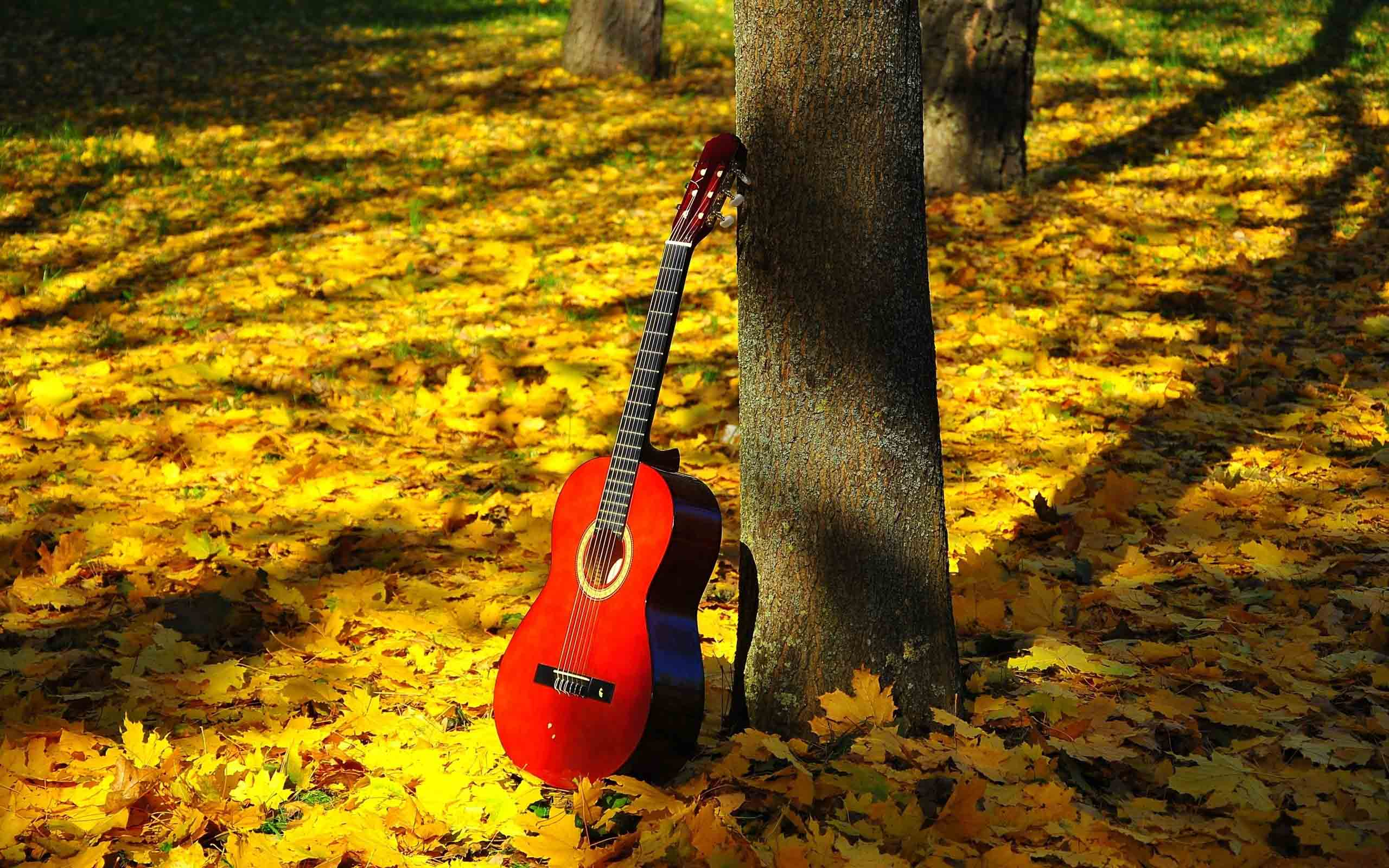 Wallpaper download new latest - Latest Guitar Hd New Wallpapers Free Download Hd Free Wallpapers