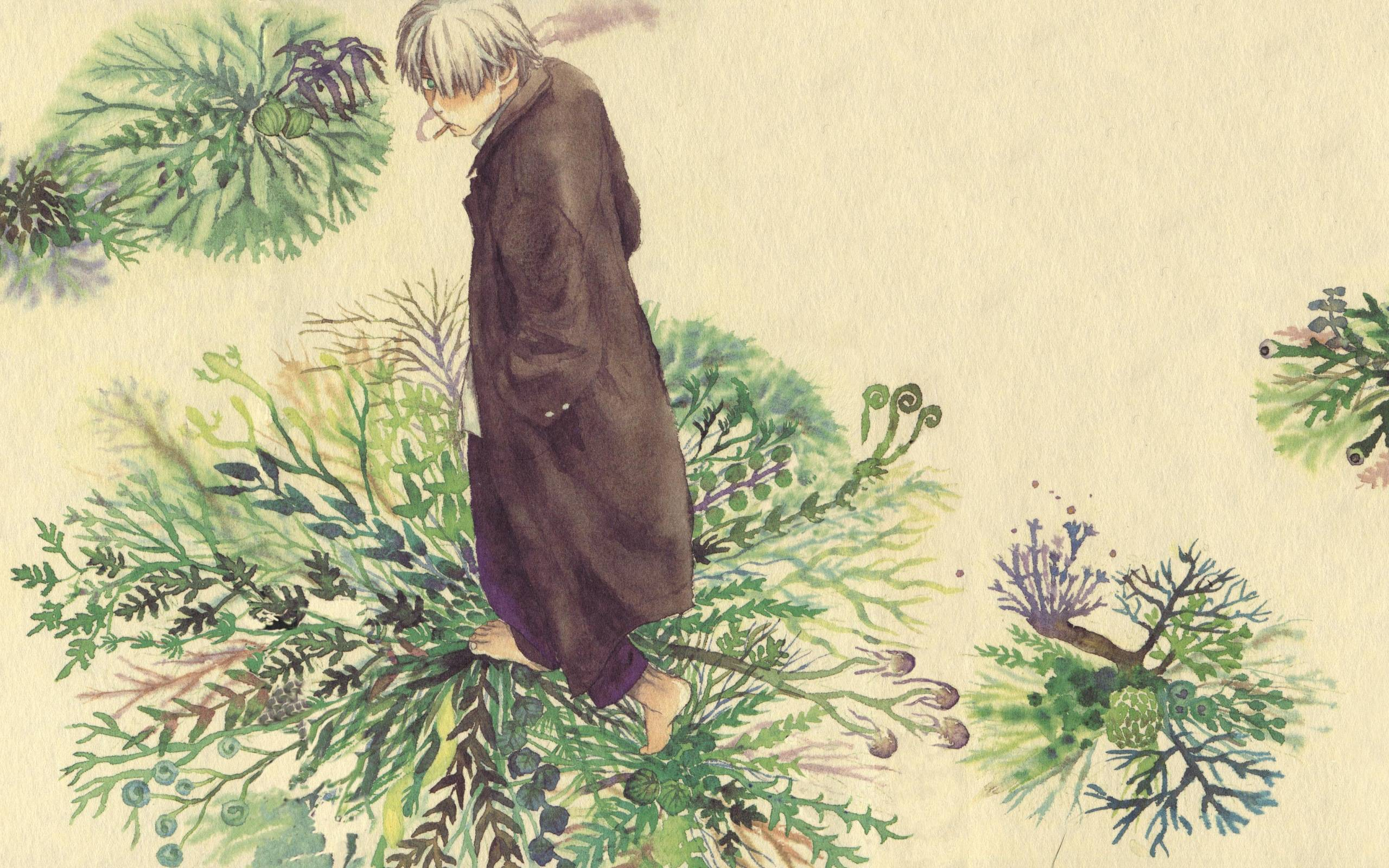 Mushishi wallpapers