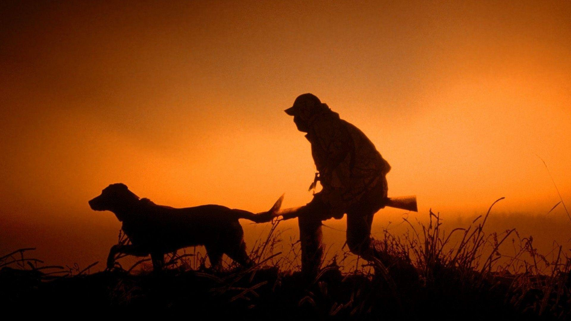 Hunting Dog Wallpapers  Wallpaper Cave